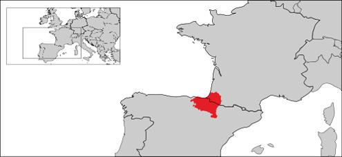 Basque Language
